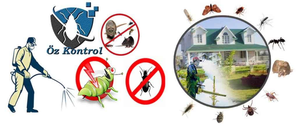 Bornova Böcek İlaçlama Şirketi