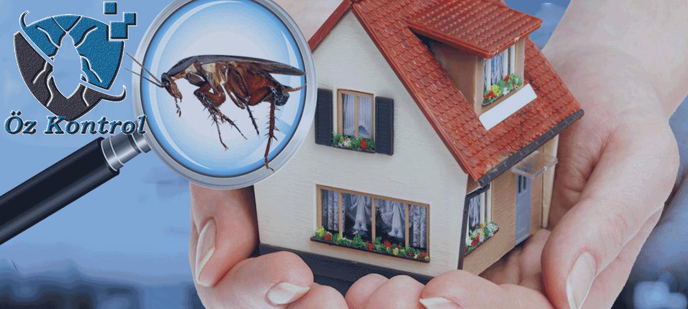 Bostanlı Böcek İlaçlama