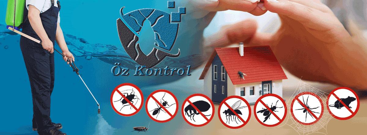 İzmir Menemen Böcek İlaçlama